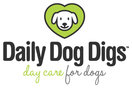 Daily Dog Digs logo
